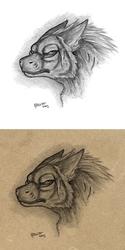 By Qzurr ~ Fabulous Facial Markings [2009]