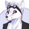 avatar of foxminoso