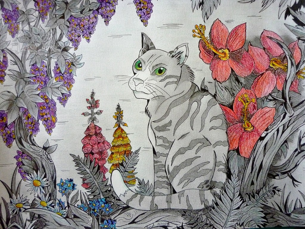 Chat & fantaisie florale