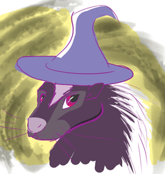 Magical Skunk