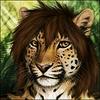 avatar of Furan Ircas