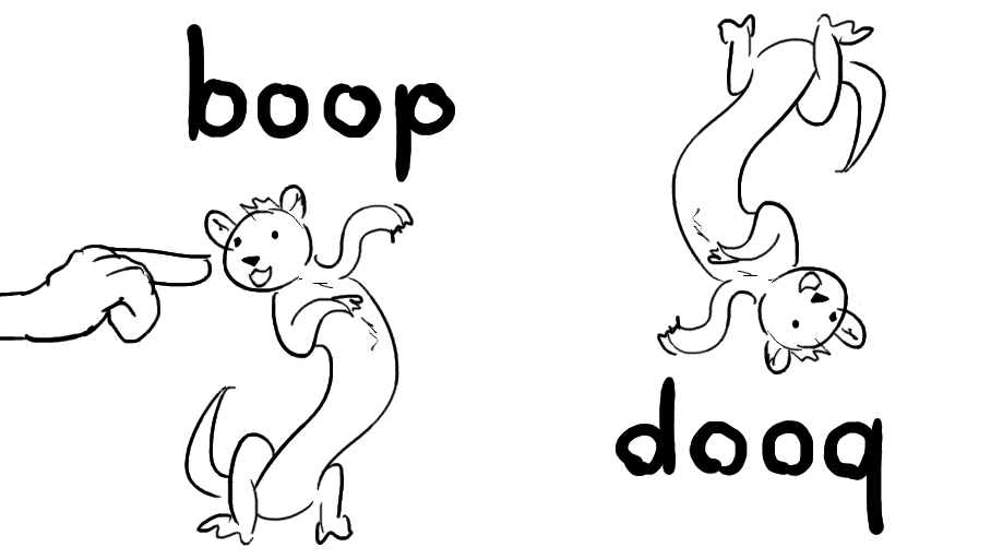 boop // dooq