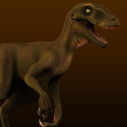 3D raptor