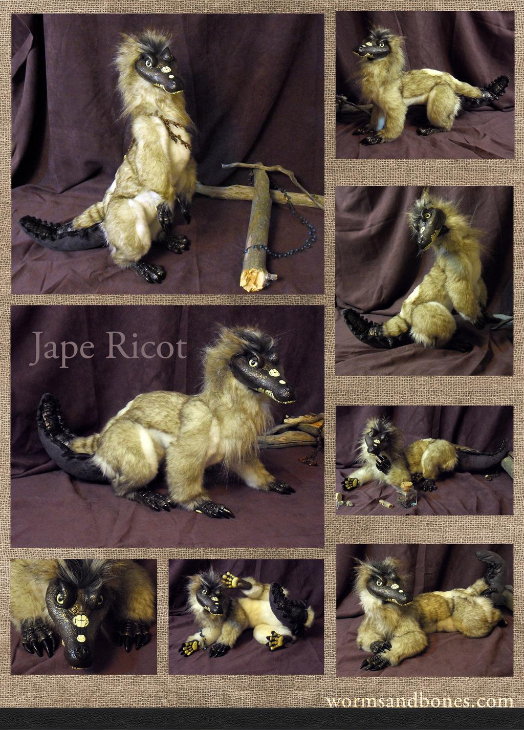 Most recent image: Jape Ricot