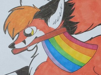 Pride Fox!