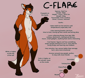 Reference of C-Flare
