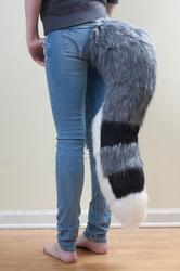LittleFox Tail