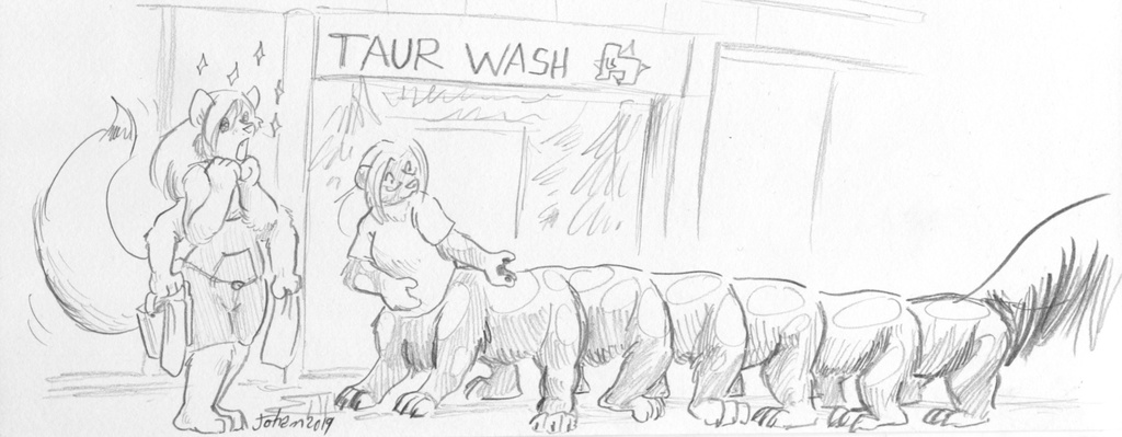 At the Taurwash
