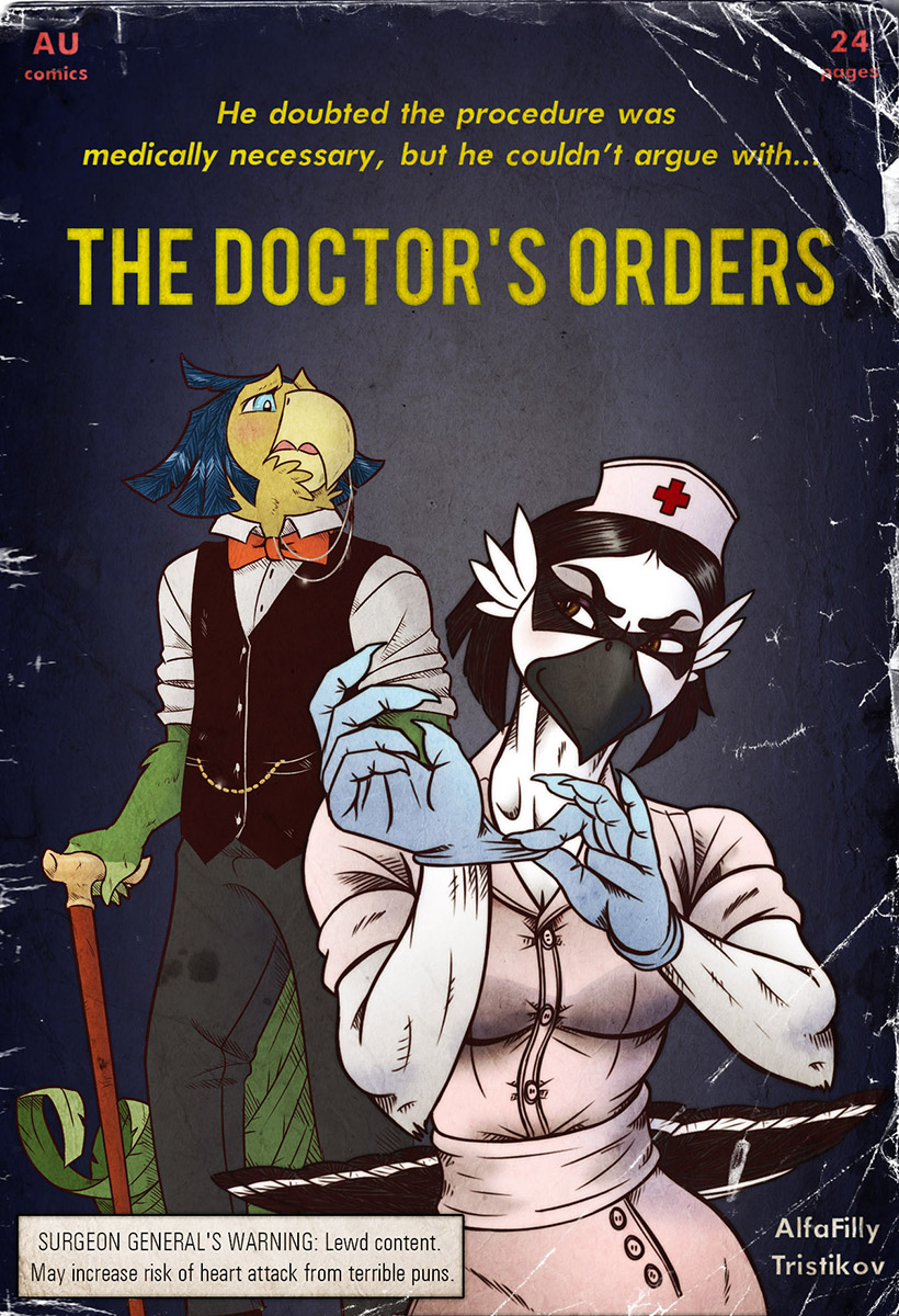The Doctor's Orders - Comic Cover