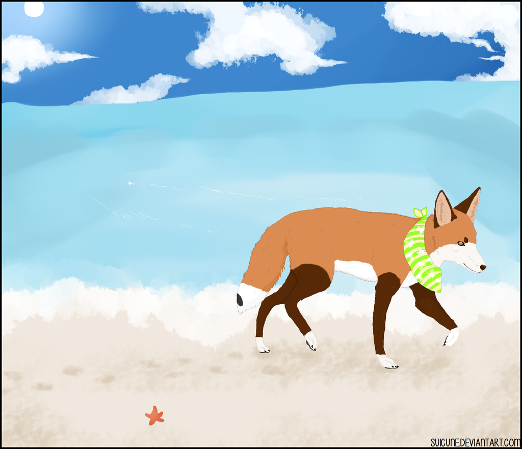 Most recent image: walk on the beach