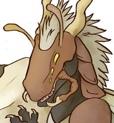 Commission: Dracobug
