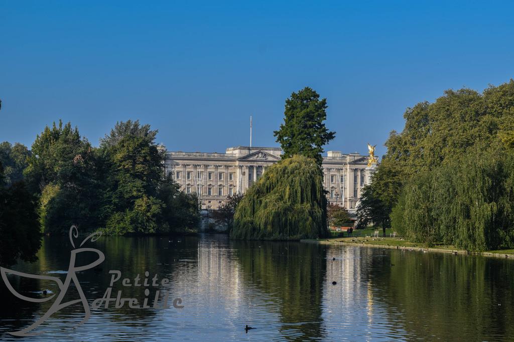 Buckingham Palace and St. James Park