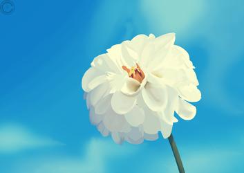 Flower Study #1