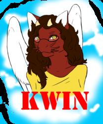 Kwin Badge