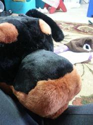 Rottweiler WIP