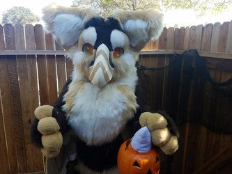 Trick or Treat! [video]