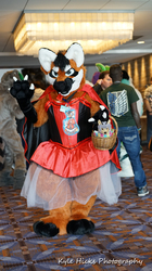 LIttle Red Riding Fangio MFF 2017