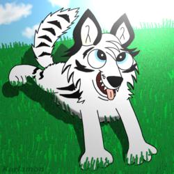 Malachi the Hopeful Wolf