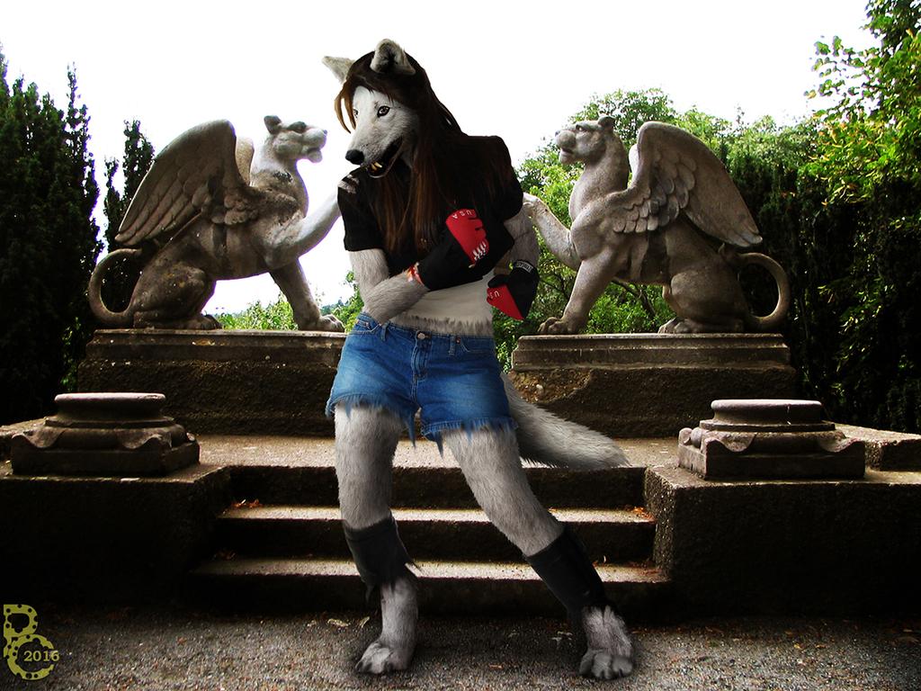 Wolfy Street Fighter