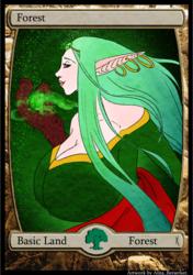1/5 - Magic Cards Commission - Land set