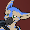 avatar of Kona
