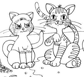 Messy Kittens