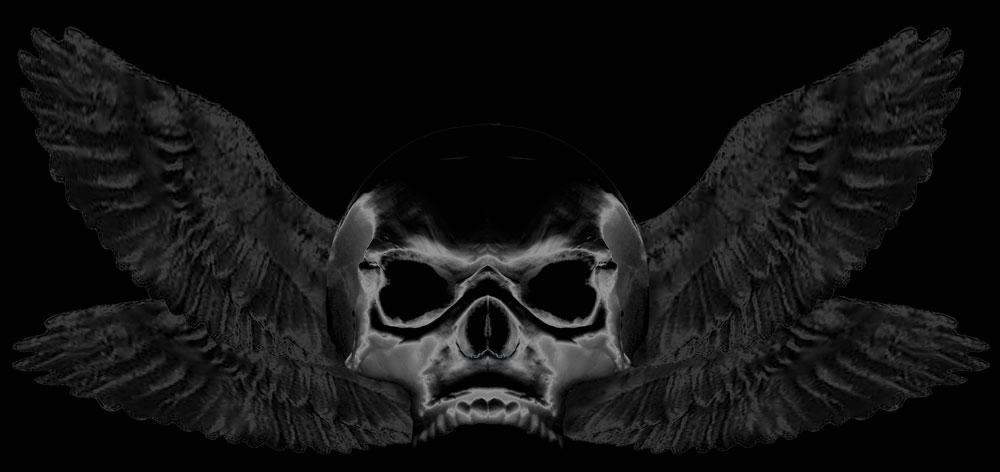 Most recent image: Devidrifters Logo