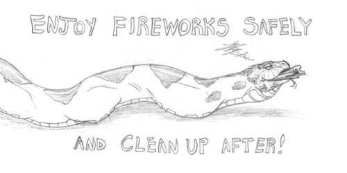 Used Fireworks