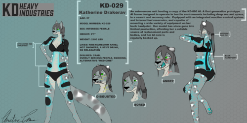 Reference Sheet Commission for Katherine Drakerav