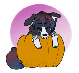 Pumpkin Hugger Savannah