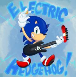 ELECTRIC HEDGEHOG
