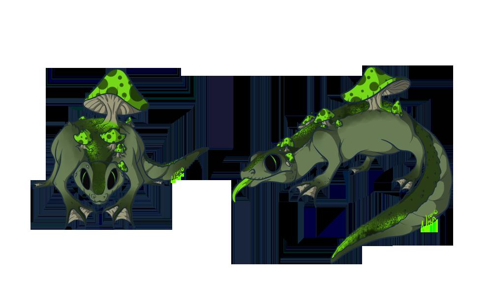 IoQ - Shoomb Gecko