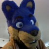 Avatar for E-Wolf