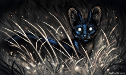 Mystery of night