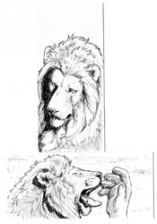 Drawing - 2016 - 020