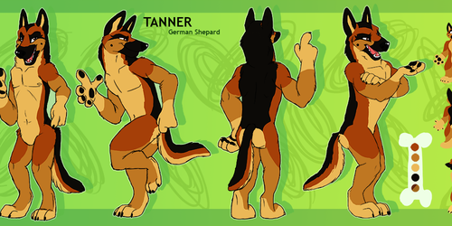 Reference for Tanner