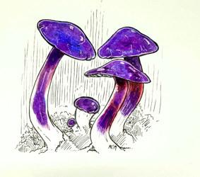 Mayshroom