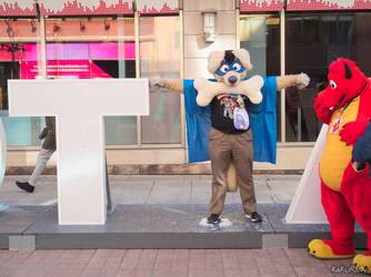 Canfurence 2017 - T-Posed RK