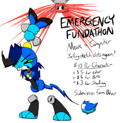 Emergency Fundathon