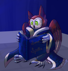 Wizard books