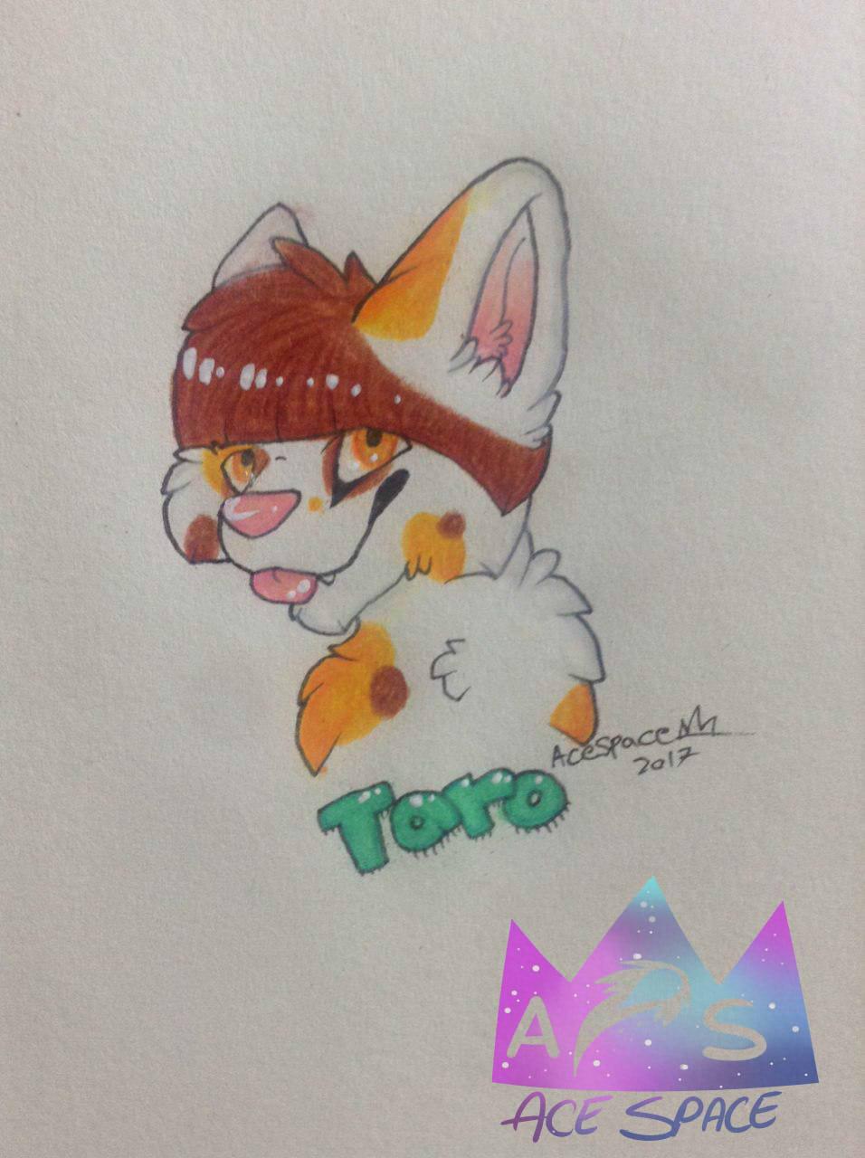 taro badge