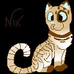 NIx Pixel
