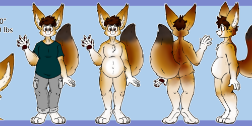 Commission - Ryn Ref Sheet