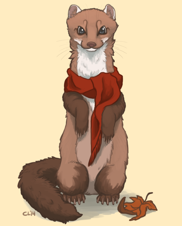 [Scarf Commission] Haizley