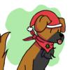 Avatar for Nokami Wolfdog