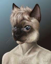 Commission: Jaycatt