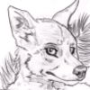 avatar of aoru