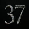 avatar of #37