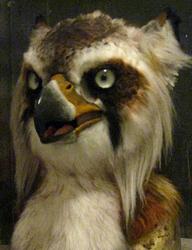 Lynx gryphon mask