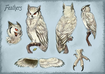 Feathers ref sheet